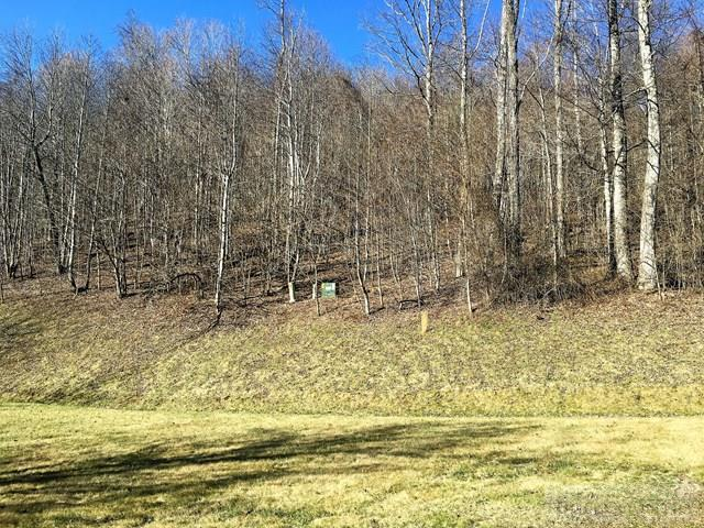 Subdivision - Todd, NC (photo 4)