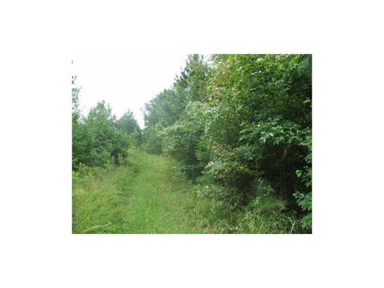 Lot 0 Salacoa Road, Waleska, GA - USA (photo 2)