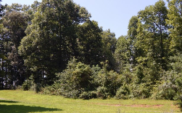 Lt 12 Brookhaven Lane, Young Harris, GA - USA (photo 5)