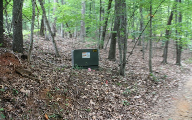 Lt 13 Picklesimer Mountain, Morganton, GA - USA (photo 2)