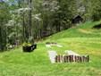 24 Tanager Trail, Ellijay, GA - USA (photo 1)
