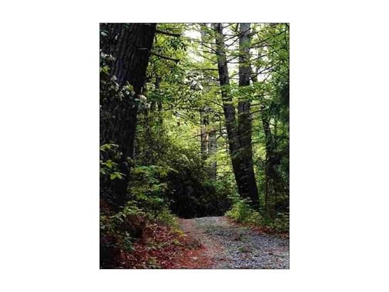 24 Tanager Trail, Ellijay, GA - USA (photo 2)