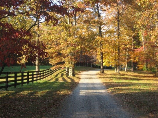 24 Tanager Trail, Ellijay, GA - USA (photo 4)