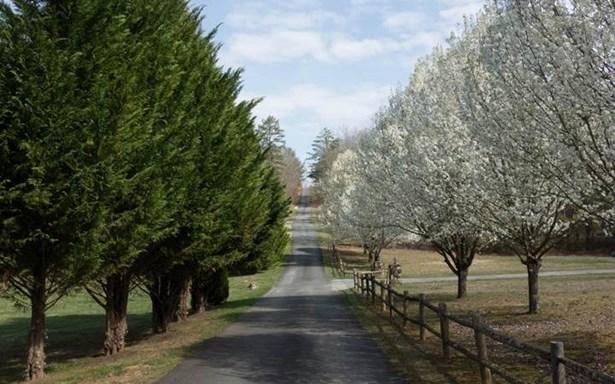 667 High Country Circle, Morganton, GA - USA (photo 2)