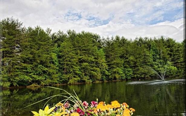 667 High Country Circle, Morganton, GA - USA (photo 3)