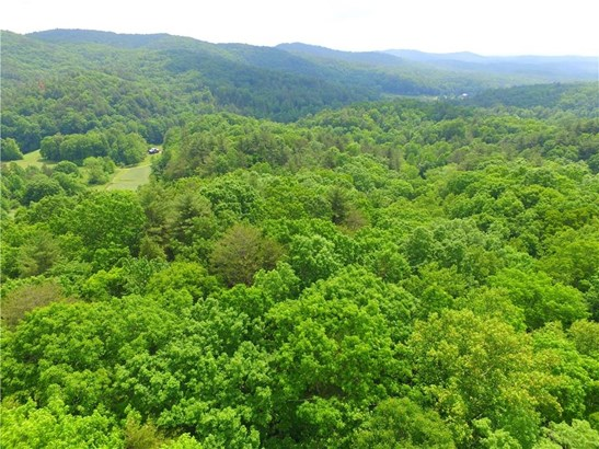 Lot 6 Chief Whitetails Road, Ellijay, GA - USA (photo 2)