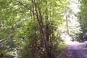 0 Labelle Cir 80, Sky Valley, GA - USA (photo 1)