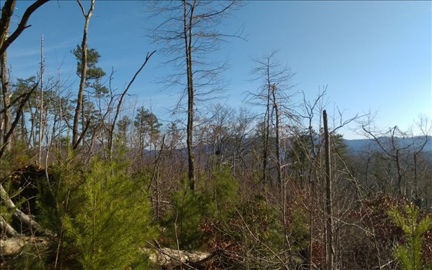 John Waters Rd, Cherrylog, GA - USA (photo 4)