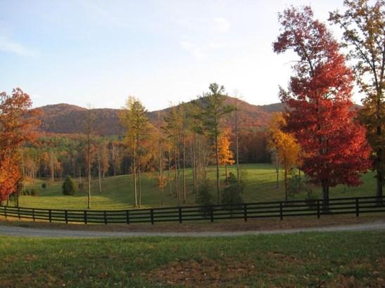 21 Mountain Camp, Ellijay, GA - USA (photo 2)