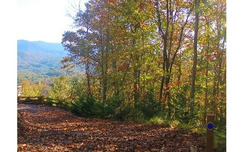 Overlook/maxwell, Blue Ridge, GA - USA (photo 2)