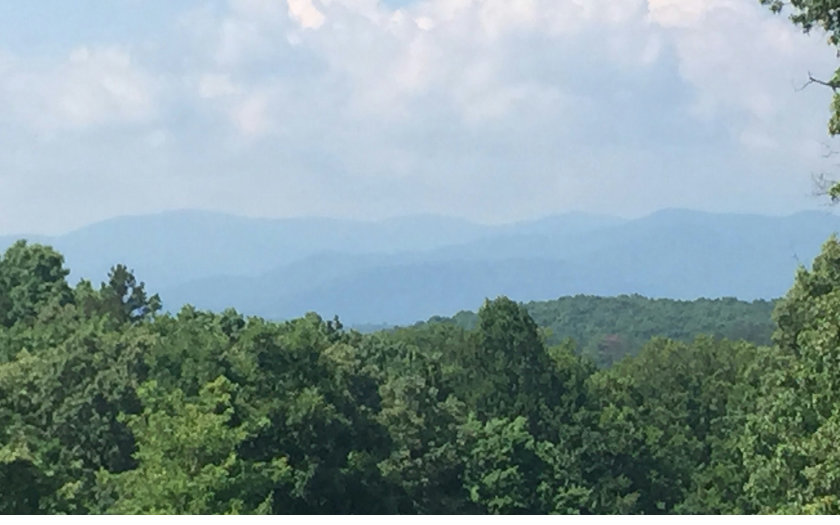 My Forest Tr, Morganton, GA - USA (photo 1)
