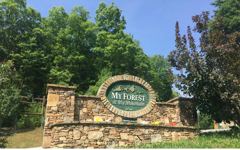 My Forest Tr, Morganton, GA - USA (photo 2)