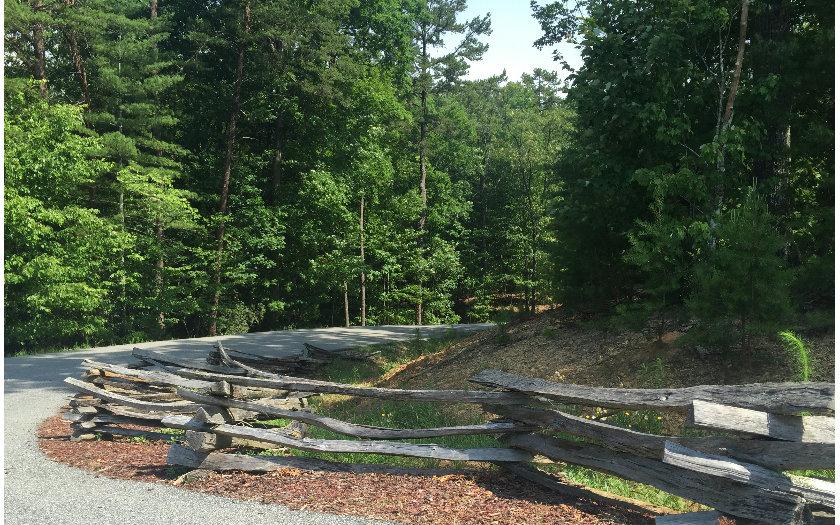 My Forest Tr, Morganton, GA - USA (photo 3)