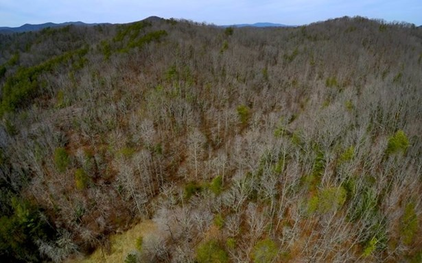 520 Bearden/chestnut H, Blue Ridge, GA - USA (photo 2)