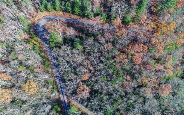 Lot8 Bootleg Mountain, Morganton, GA - USA (photo 4)