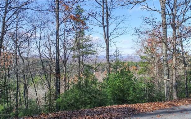 Lot8 Bootleg Mountain, Morganton, GA - USA (photo 5)