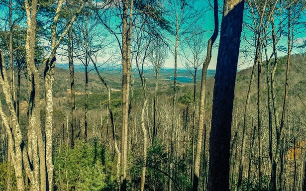 Lt 11 Aska's Grand Vista, Blue Ridge, GA - USA (photo 2)