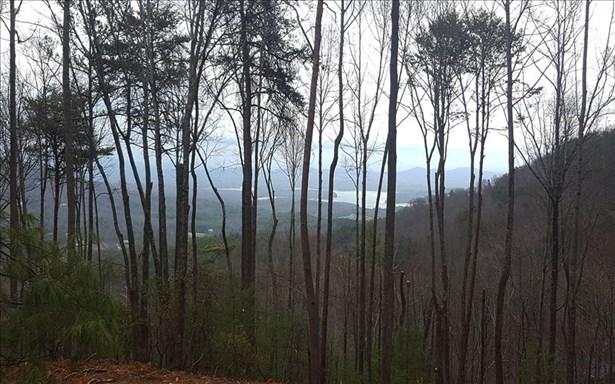 Lt 11 Aska's Grand Vista, Blue Ridge, GA - USA (photo 4)