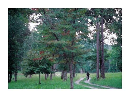 27r Tanager Trail, Ellijay, GA - USA (photo 4)