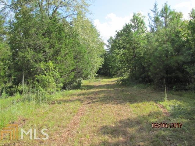 2855 Sullivan Mill Rd, Senoia, GA - USA (photo 4)