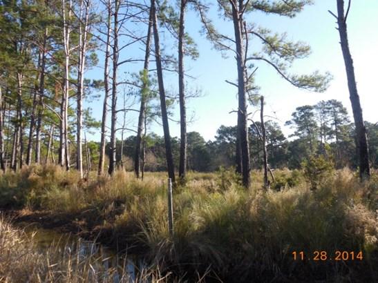 0 Perimeter Road, Sapelo Island, GA - USA (photo 1)