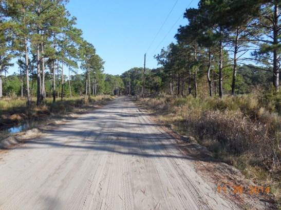0 Perimeter Road, Sapelo Island, GA - USA (photo 2)