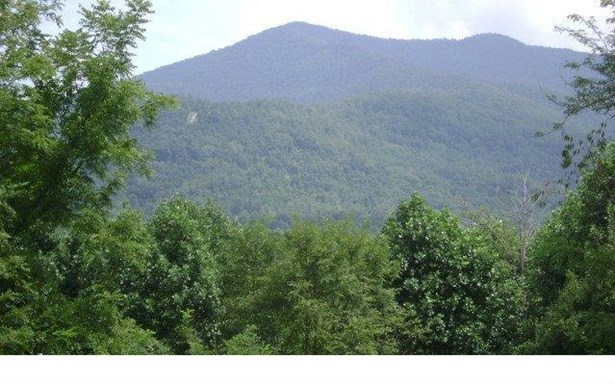 Trackrock Gap Road, Blairsville, GA - USA (photo 1)