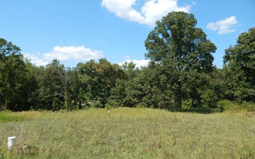 Lot16 The Arbor, Blairsville, GA - USA (photo 2)