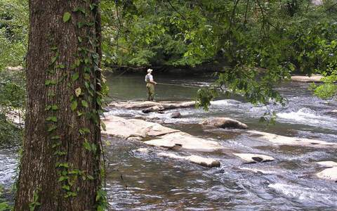 Lot 6 Toccoa Camp Trail, Mineral Bluff, GA - USA (photo 1)