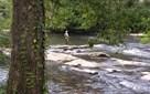 Lot 6 Toccoa Camp Trail, Mineral Bluff, GA - USA (photo 1)