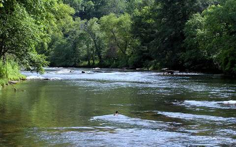 Lot 6 Toccoa Camp Trail, Mineral Bluff, GA - USA (photo 2)