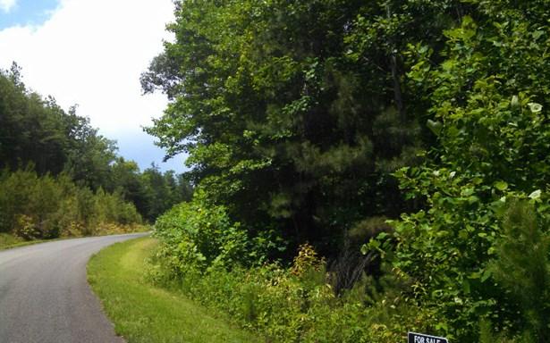 Lot 3 Incline Drive, Jasper, GA - USA (photo 3)