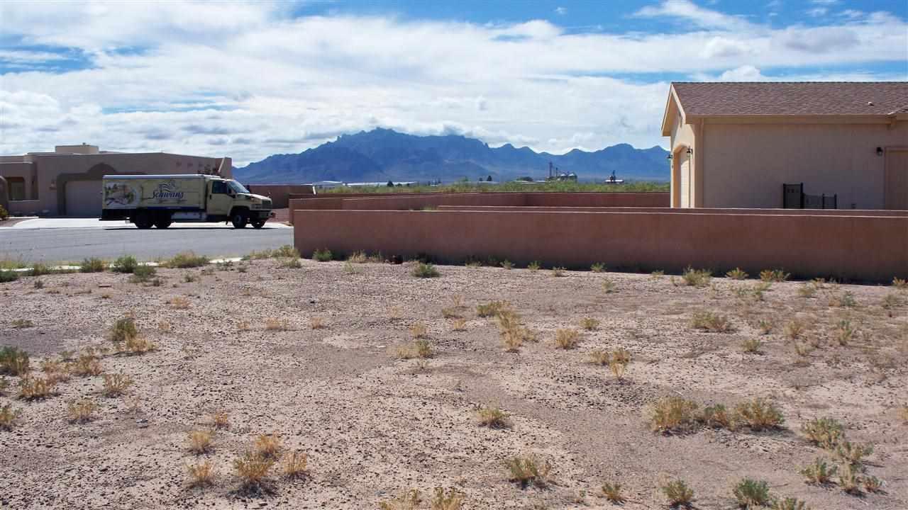 Acreage/Undeveloped - DEMING, NM (photo 2)