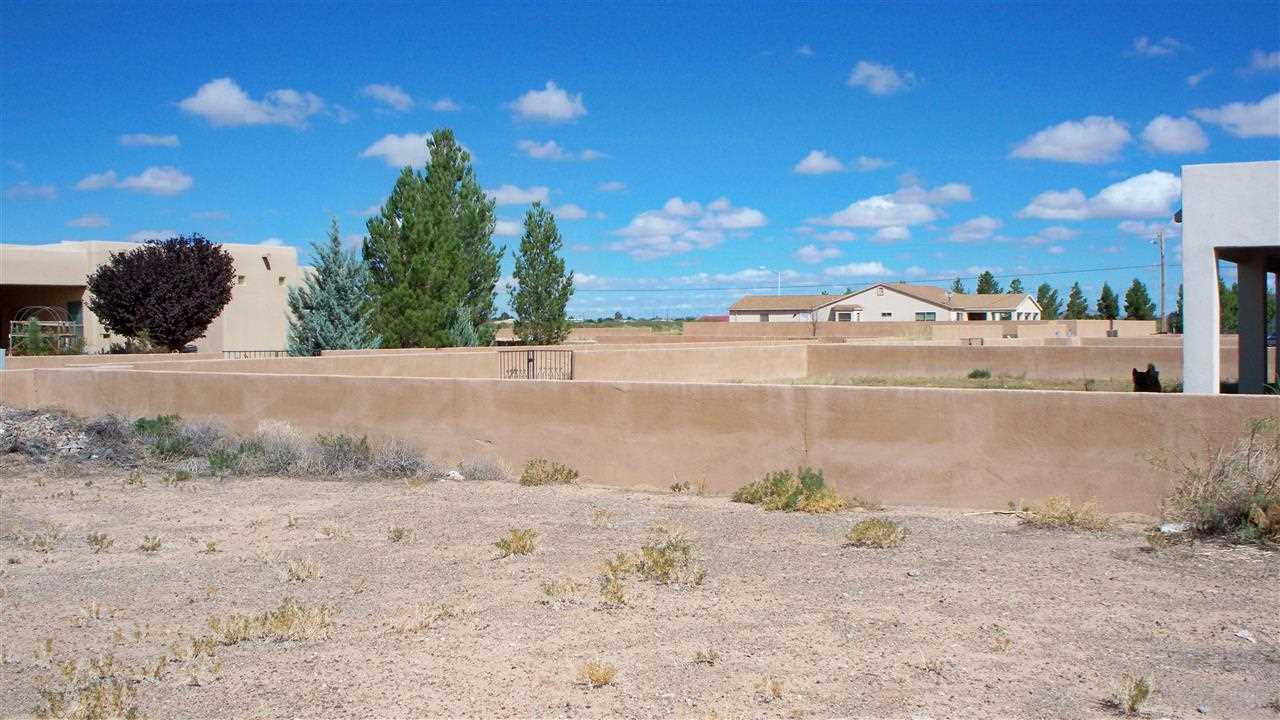 Acreage/Undeveloped - DEMING, NM (photo 4)