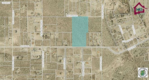 Acreage/Undeveloped - ANTHONY, NM (photo 2)