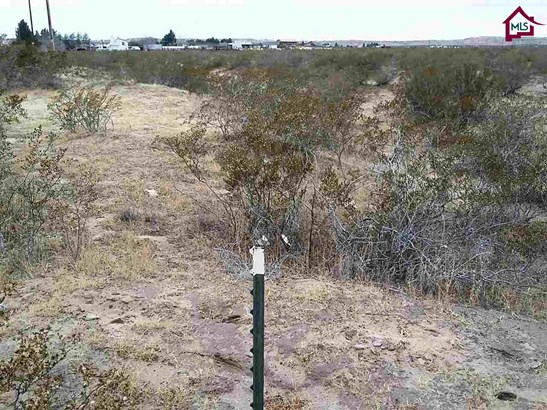 Acreage/Undeveloped - ANTHONY, NM (photo 4)
