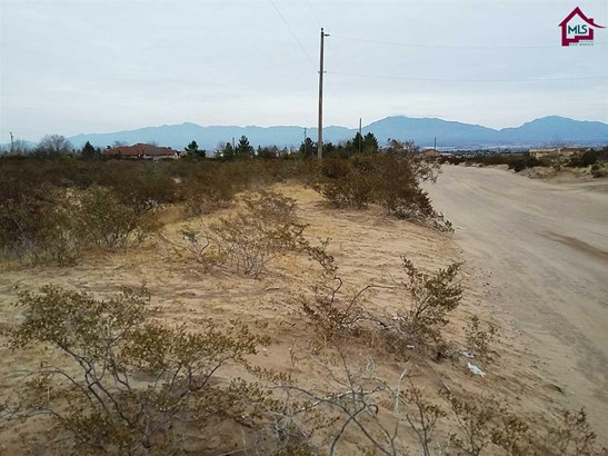 Acreage/Undeveloped - ANTHONY, NM (photo 5)