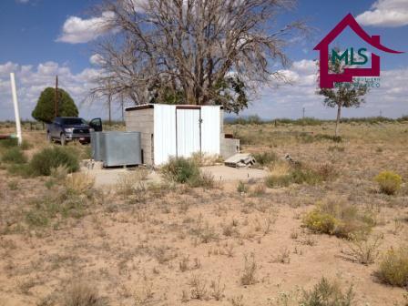 Farm - DEMING, NM (photo 5)