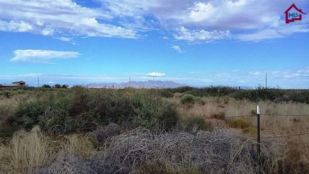 Acreage/Undeveloped - CHAPARRAL, NM (photo 2)