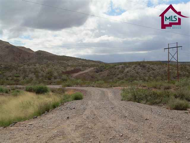 Acreage/Undeveloped - HATCH, NM (photo 1)
