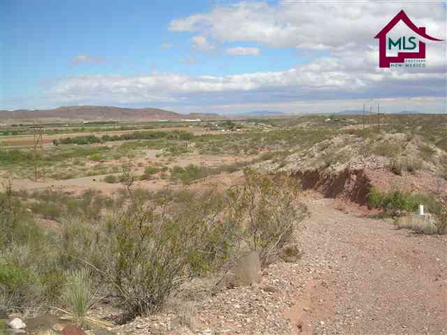 Acreage/Undeveloped - HATCH, NM (photo 5)