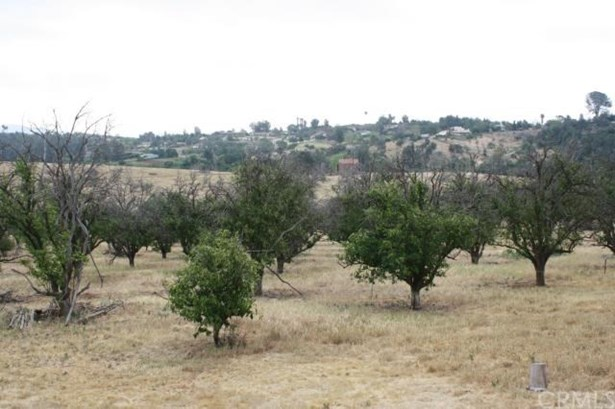 Land/Lot - Fallbrook, CA (photo 2)