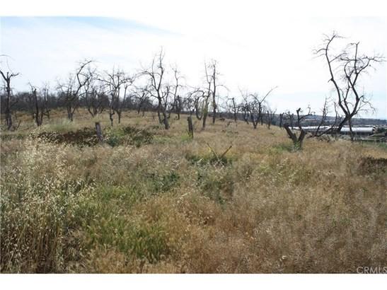 Land/Lot - Fallbrook, CA (photo 4)