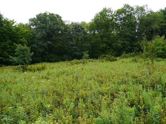 Approved Lot,Other-See Remarks - Starlight, PA (photo 3)