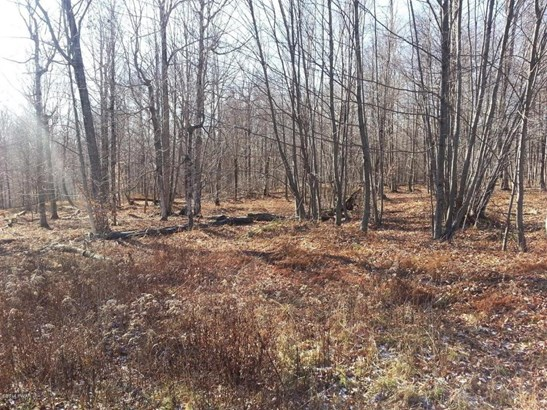 Approved Lot,Improved Lot,Raw Land - Equinunk, PA (photo 4)