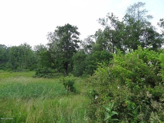 Raw Land,Rural - Beach Lake, PA (photo 3)