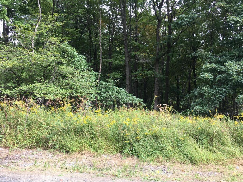 Raw Land - Greeley, PA (photo 2)