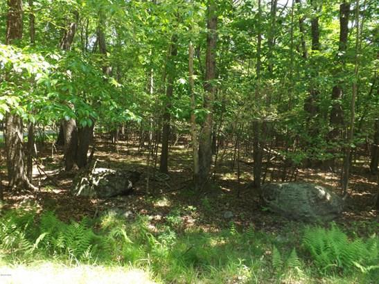 Raw Land - Lakeville, PA (photo 1)