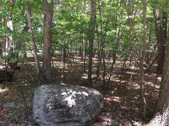 Raw Land - Lakeville, PA (photo 2)