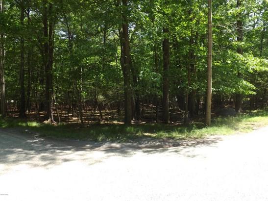 Raw Land - Lakeville, PA (photo 3)